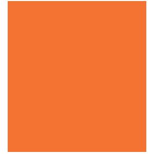 BSV OWL e.V.